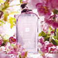 Jo Malone launches new Plum Blossom fragrance