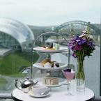 Tea with a view at Six in Tyneside