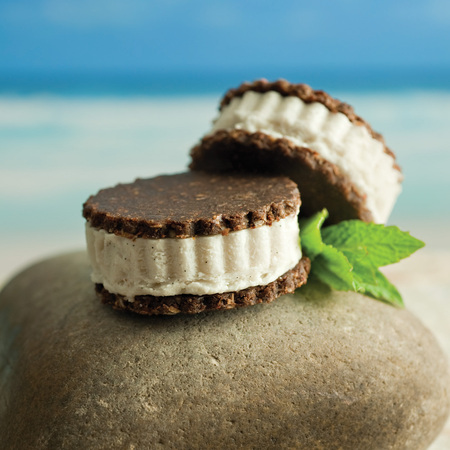 Ice Cream sandwiches, desserts, gluten and grain free