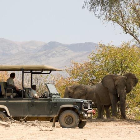 Porini Lion Camp, Kenya