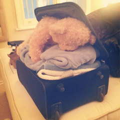 Millie Mackintosh packing suitcase