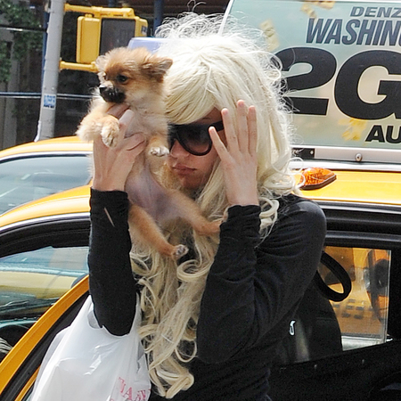 Amanda Bynes sports curly blond wig in New York