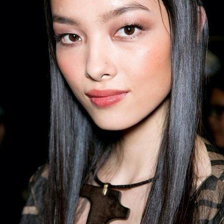 Fei Fei Sun model