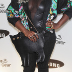 X Factor's Misha B's cat handbag