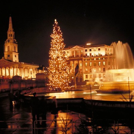 trafalgar square - christmas tree - free days out london
