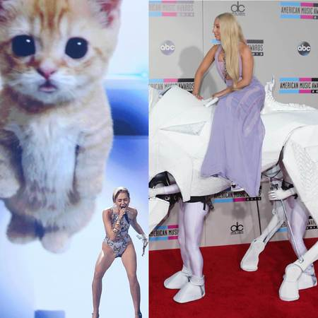 American Music Awards - Miley Cyrus sings with kitten - Lady Gaga arrives on white horse - animals - celebrities - handbag.com