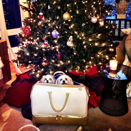 Tyler Alexandra handbag - christmas tree - puppies in a handbag - handbag.com