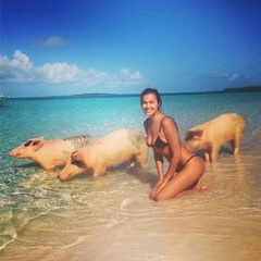 Irina Shayk - swimming with pigs - instagram - bahamas - travel bag - handbag.com