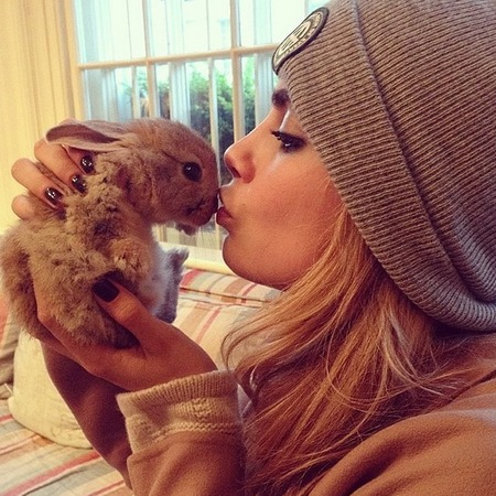 Cara Delevingne's bunny Cecil