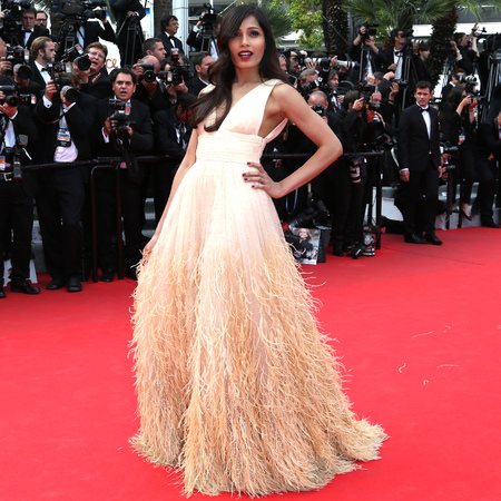 freida pinto-cannes film festival 2014-red carpet-feather dress-michael kors-handbag.com