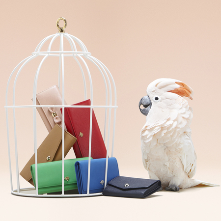 mulberry-new purse-summer 2014-rainbow colours-birds-exclusive to handbag.com