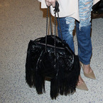 Khloe Kardashian still in relationship puzzle