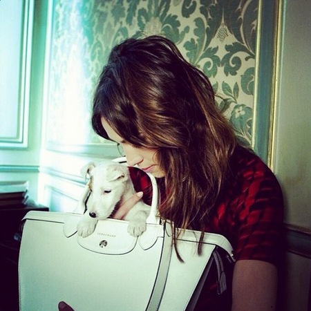 alexa chung-longchamp autun winter 2014-cute dog-white le pliage bag-handbag.com