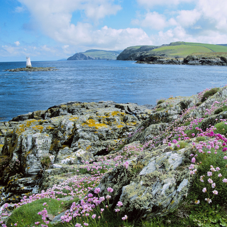 The Calf of Man -  isle of man - travel review - travel feature - handbag.com
