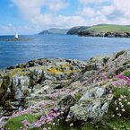 Discover wildlife on a weekend trip to Isle of Man