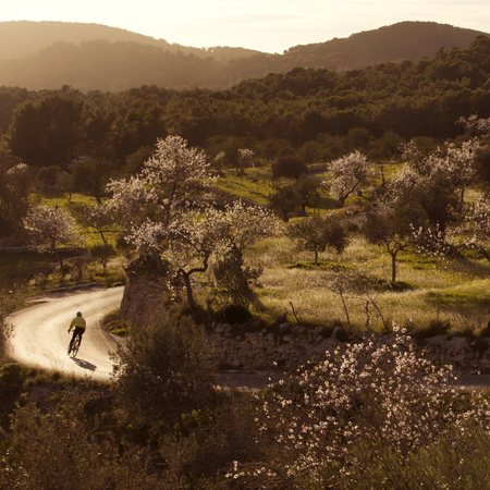 cycling - 5 reasons to visit the relaxing part of Ibiza - travel - feature - travel bag - handbag.com
